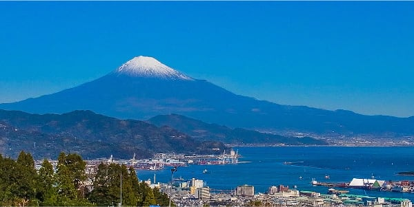 海や富士山を望むお墓